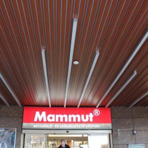 mammut_2010_12